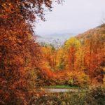 Herbstimpressionen in der Tempelanlage in Tawern